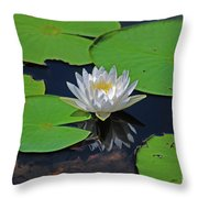 2- White Water Lily Throw Pillow