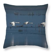 Whooper Swans In Flight Throw Pillow