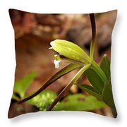 Whorled Pogonia Throw Pillow