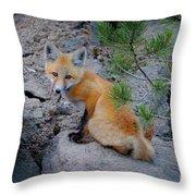 Wild Fox Near Den In Wilderness Animals Throw Pillow