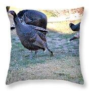 Wild Turkeys. Throw Pillow