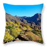 Wildflowers On Rocks, Anza Borrego Throw Pillow