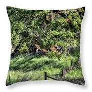 Willets Barn Throw Pillow