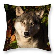 Wolf Portrait Throw Pillow