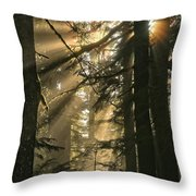 Sunburst Rainbow Throw Pillow