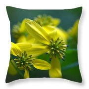 Yellow Wingstem Throw Pillow