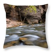 Zion National Park Narrows Throw Pillow