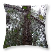 Australia - Molecules Of Water On A Web Throw Pillow