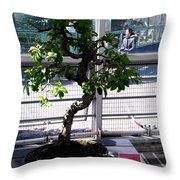 Brooklyn Garden Throw Pillow