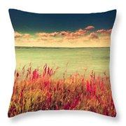 Great Landscape Throw Pillow