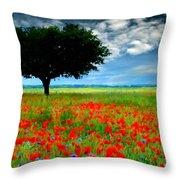 Landscape Illumination Throw Pillow