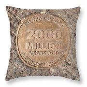 2000 Million Years Ago Throw Pillow