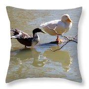 2002-ducks Throw Pillow