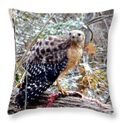 2005-hawk And Snake Throw Pillow
