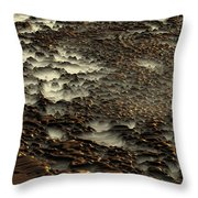 2008 5 17b Throw Pillow