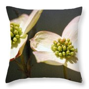 2008 Just Two Of Us Throw Pillow