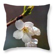 2008 Springtime  6365  Throw Pillow