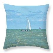 2012 08 11 Chicago Dsc_1630 Throw Pillow