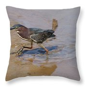 2012-baby Green Heron Throw Pillow