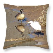 2012-white Crane And Canadian Goose Throw Pillow