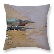 2013-baby Green Heron Throw Pillow