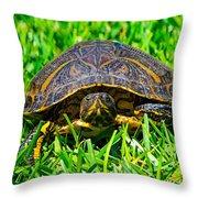 2015 05 03 01 B 1 _0181 Throw Pillow