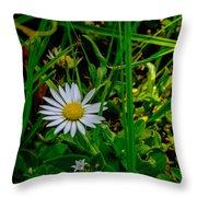 2015 08 23 01 A Flower 1106 Throw Pillow