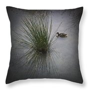 2015 Germano Reale Throw Pillow