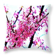 2016-03-18 Redbud Tree In Bloom Throw Pillow