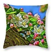 2016 Early May King Arthur Crabapple Throw Pillow
