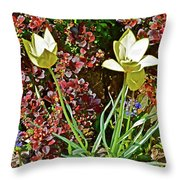 2016 Early May Side Garden Delight Throw Pillow