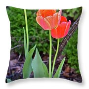 2016 Early May Tall Red Tulips Throw Pillow