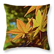 2016 Japanese Maple In The Sunlight Throw Pillow