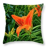 2016 July Garden Daylily Summer Afternoon Throw Pillow