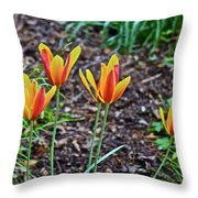 2016 Mid May Meadow Garden Tulips Throw Pillow