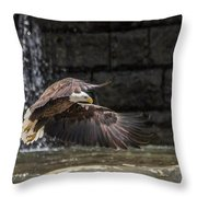 2017 04 16 271 Throw Pillow