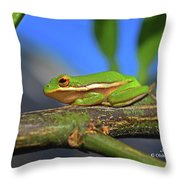 2017 11 04 Frog I Throw Pillow