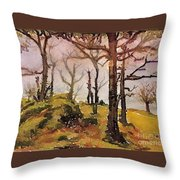 #20170221b Throw Pillow