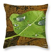 2018 08 31 Sign  H2o Leaf Img_5999 Throw Pillow