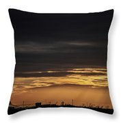 2018_02_pecos Tx_cactus 153 4 Throw Pillow