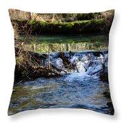 2018_2_12  Mountian Stream-4218 Throw Pillow