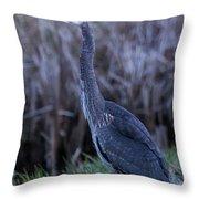 2018_3_09  Blue Heron-5652 Throw Pillow