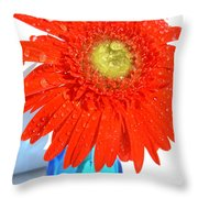 2044a Throw Pillow