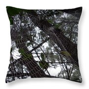 Australia - Spider Web High In The Tree Throw Pillow