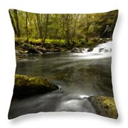 Drawings Landscapes Throw Pillow
