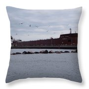 21 Gull Salute Throw Pillow