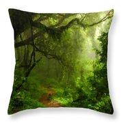 Landscape Work Throw Pillow