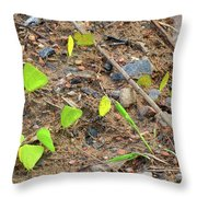 21 Yellow Butterflies Throw Pillow