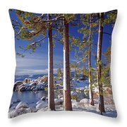 211257 Snow On Tree Sides Lake Tahoe Throw Pillow