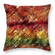 21st Century Intolerance Throw Pillow